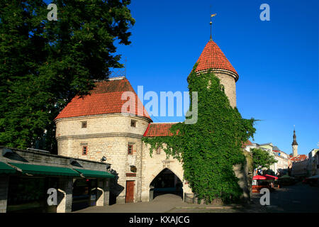 The 14th century  Viru Gate at the entrance to the old town in Tallinn, Estonia - Stock Photo