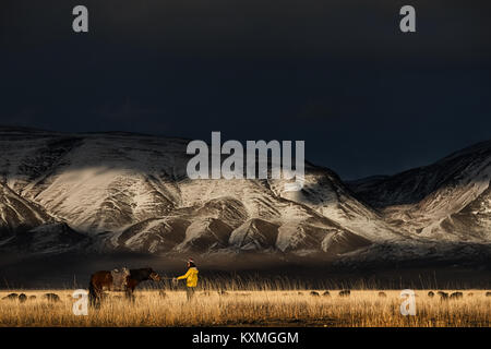 Horse planted on his tracks snowy mountains Mongolia goats herd winter steppes grasslands - Stock Photo