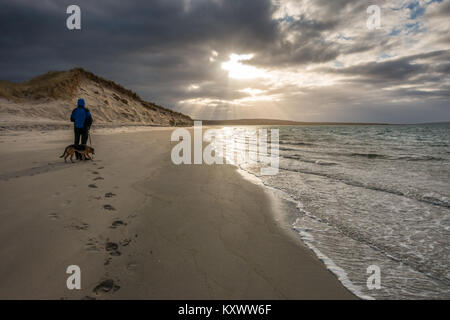 Sand dunes lit up at the beach at Killinallan on Loch Gruinart in dramatic winter low sunlight with walker person - Stock Photo