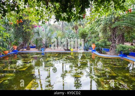 MARRAKECH, MOROCCO - FEBRUARY 22, 2016: The Majorelle Garden is a botanical garden and artist's landscape garden - Stock Photo