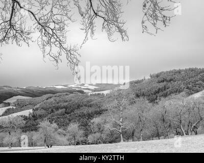 Scenic monochrome winter panorama of a snowy rural countryside landscape with trees, forest, hills, fields and valleys - Stock Photo