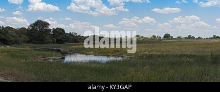 Linyanti Swamp on the border of Botswana, Namibia - Stock Photo
