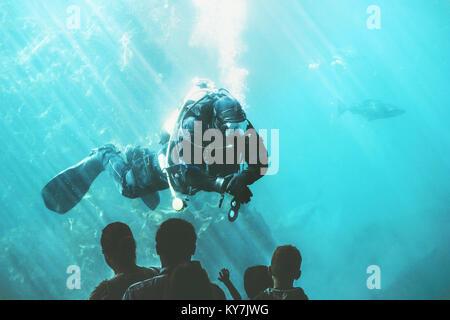 Scuba Diver underwater in fish aquarium attraction entertainment unrecognizable people sightseeing - Stock Photo