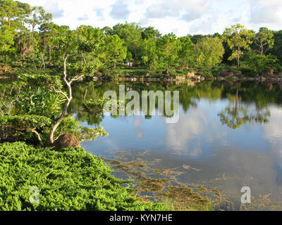 Morikami Museum and Japanese Gardens Delray Beach, Palm Beach County, Florida, United States - Stock Photo
