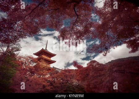 Dramatic artistic photograph of Sanjunoto pagoda of Kiyomizu-dera Buddhist temple in Kyoto, Japan in a beautiful - Stock Photo