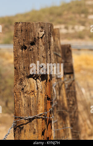 Wooden posts with barbed wire - Stock Photo