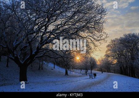 Winter sunrise in deserted Kelvingrove Park, Glasgow. Scotland. - Stock Photo