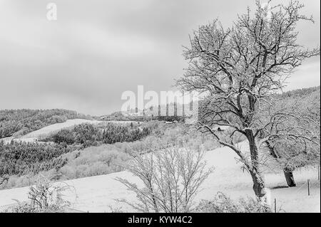 Rural idyllic bright monochrome winter landscape countryside scene over a snow field with hill, sky, clouds, trees,forest,high - Stock Photo