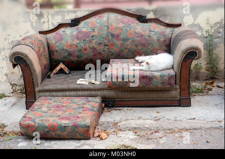 White cat sleeping on old couch at street of Istanbul, Country Turkey - Stock Photo