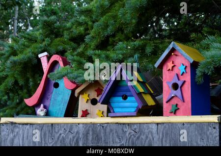 Brightly colored painted birdhouses sitting in a row, underneath a green spruce tree. - Stock Photo
