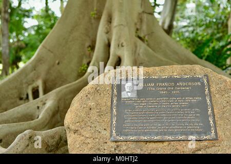 William Francis Anderson plaque, Anderson Park Botanic Gardens, Townsville, Queensland, Australia - Stock Photo