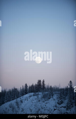 Full moon rising in a pastel sky over snowy treeline - Stock Photo
