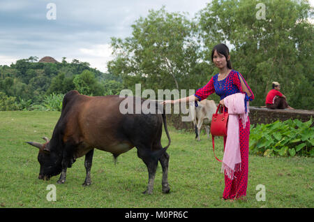 A young, pretty and local woman poses together with a strong bull on a field at an ancient temple in Mrauk U, Rakhine - Stock Photo