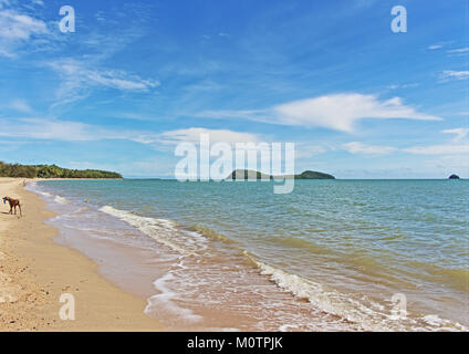 Clifton Beach to Palm Cove is simply one of the best, uncrowded, and scenic sandy beach stretches to take the dog - Stock Photo