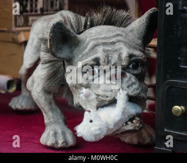 Weird Dog statue in an antique store in Paris France - Stock Photo