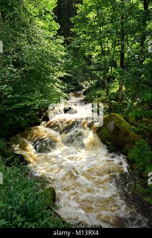 Germany, Baden Wurttemburg, Black Forest, Triberg, Triberg Waterfalls, Germany's highest waterfalls - Stock Photo