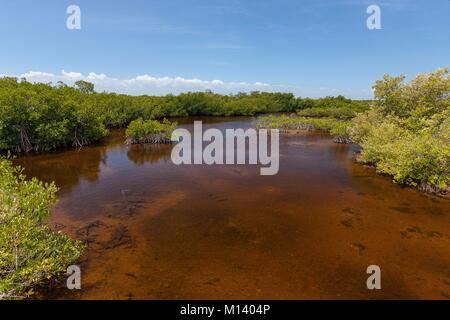 Cuba, Villa Clara province, Jardines del Rey, Cayo Santa Maria - Stock Photo