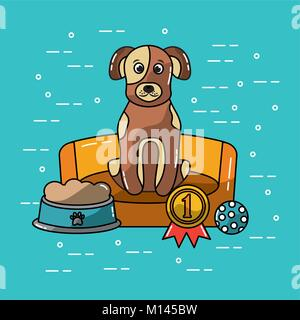 pet dog sitting in bed with food and medal winner - Stock Photo
