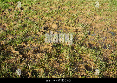 waterlogged flooded muddy sports pitch field garden lawn - Stock Photo