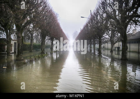 Sandrine Huet / Le Pictorium -  The Seine river flood, January 2018 -  27/01/2018  -  France / Ile-de-France (region) - Stock Photo