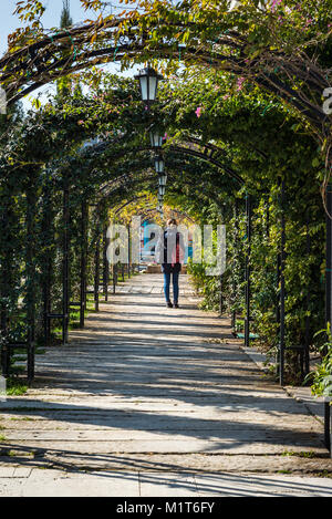 Girl standing at plant archway - Stock Photo