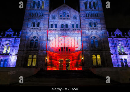 The entrance to the iconic Natural History Museum illuminated in red and blue colours in the evening for an event, - Stock Photo