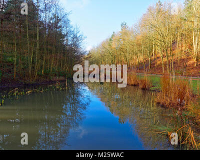 A clear, bright winters day. A small pond, with reeds growing at the waters edge, reflects the winter sky and the - Stock Photo