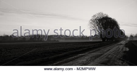 Pre sunrise sky reflected off of the road surface with ground fog in the distance. - Stock Photo