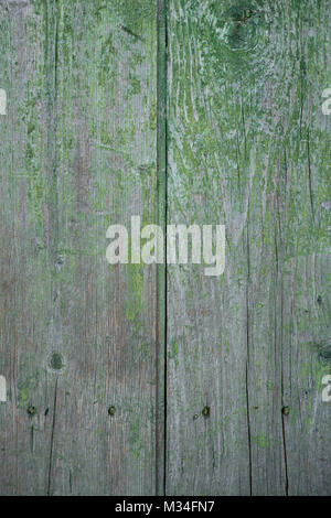 Part of old wooden green panel with nails - Stock Photo