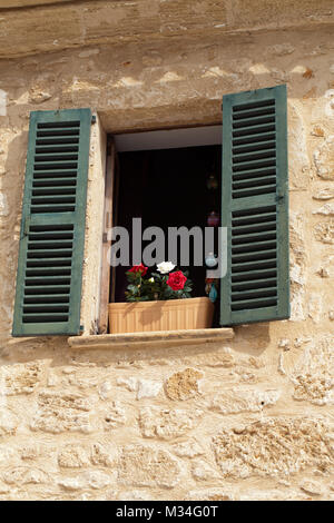 Old Shutter windows with a flowers. - Stock Photo