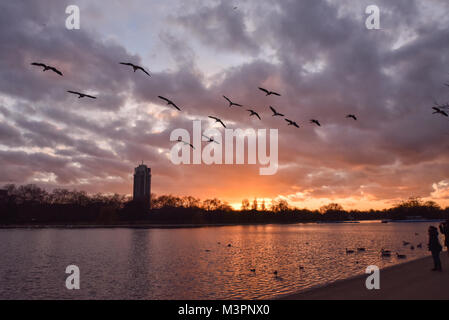 Hyde Park, London, UK. 12th February 2018. Sunset over the Serpentine lake in Hyde Park. Credit: Matthew Chattle/Alamy - Stock Photo