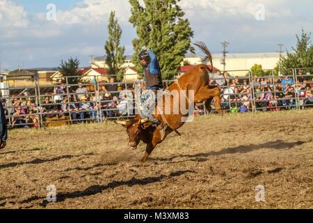 Ballarat International Rodeo - Ballarat Polocrosse Grounds ,Victoria Australia - Stock Photo