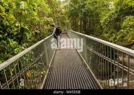 On the bridge across Mossman Gorge, Daintree National Park, North Queensland, Australia, - Stock Photo