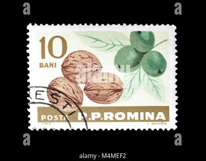 Cancelled postage stamp printed by Romania, that shows Walnuts, circa 1963. - Stock Photo
