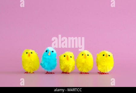 standing out from the crowd-4 yellow toy Easter chicks and 1 turquoise toy Easter chick in a row on a pink background - Stock Photo
