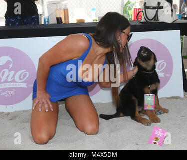 Miami Beach, Florida, USA. 18th Feb, 2018. Star of French Reality show Secret story 9 and winner of the brunette - Stock Photo