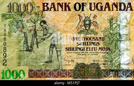 Uganda One Thousand 1000 Shilling Bank Note - Stock Photo