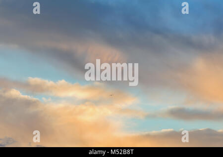 a bird in the sky flies in multicolored, fluffy glowing clouds to meet the light - Stock Photo