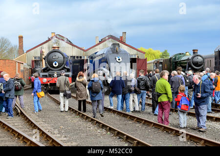 Steam locos 6023 King Edward II and 60007 Sir Nigel Gresley at Didcot Railway Centre during the 'Once in a Blue - Stock Photo