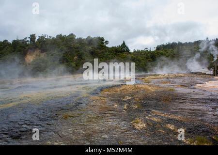 Rainforest, beautiful river and geothermal activity in Orakei Korako park, The Hidden Valley in New Zealand - Stock Photo