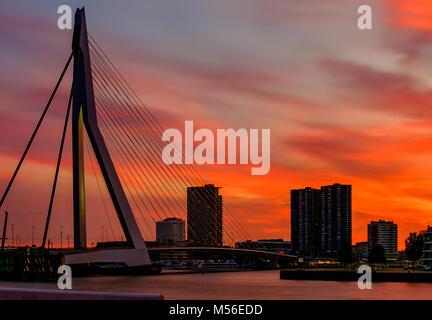 Rotterdam city cityscape with Erasmus bridge at sunset - Stock Photo