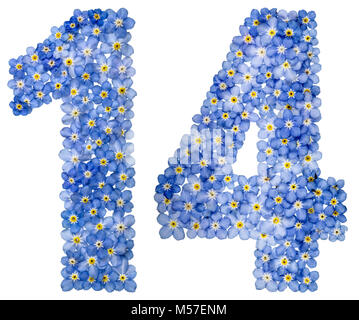 Arabic numeral 14, fourteen, from blue forget-me-not flowers - Stock Photo