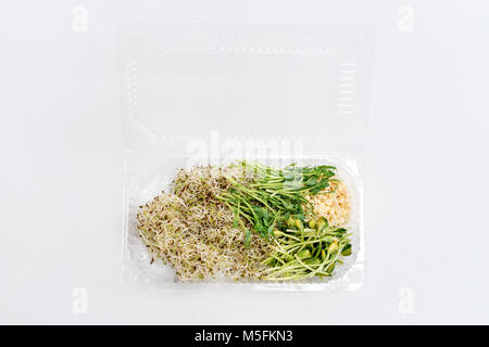 Different types of micro greens in plastic container on white background. Healthy eating concept of fresh garden - Stock Photo