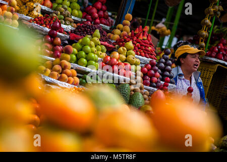 A Colombian vendor, seen behind the piles of fruits, shouts out to customers at the market of Paloquemao in Bogotá, - Stock Photo