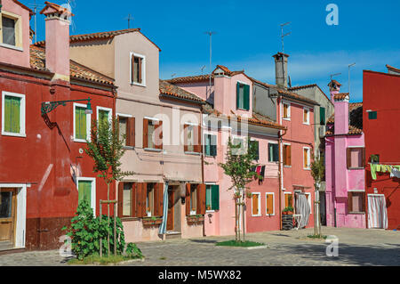 Overview of colorful terraced houses and bush flowers on sunny day in Burano, a gracious little town full of canals, - Stock Photo