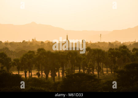 Landscape with temples and pagodas in the magic evening light in Bagan, Myanmar - Stock Photo