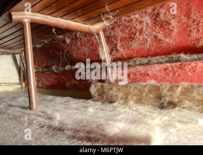 Dust under the furniture, the vacuum cleaner missed this area for a while. - Stock Photo