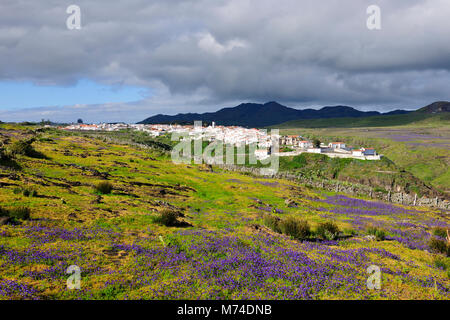 Vila do Porto, Santa Maria island. Azores, Portugal - Stock Photo