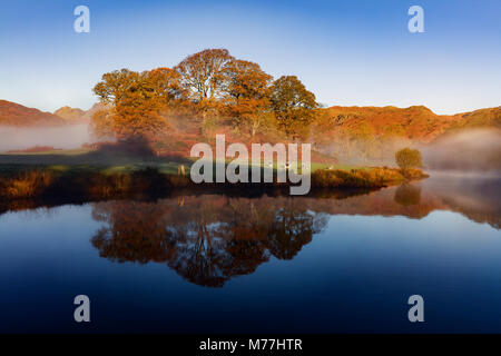 Autumn mists swirl around the trees on the banks of Elterwater on a calm morning in the Lake District National Park, - Stock Photo