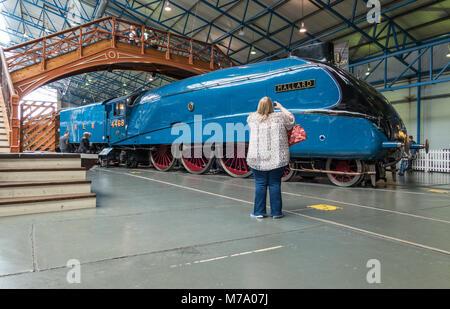 Steam locomotive Mallard on display at The National Railway museum in York England UK. - Stock Photo